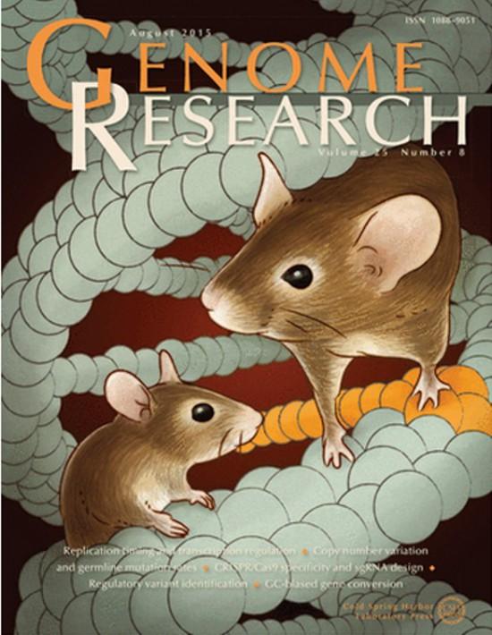 Genome Research誌8月号の表紙に採用